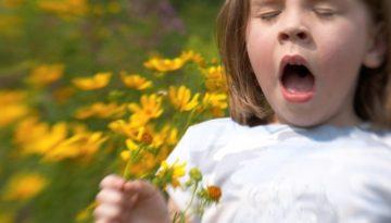 allergy 5